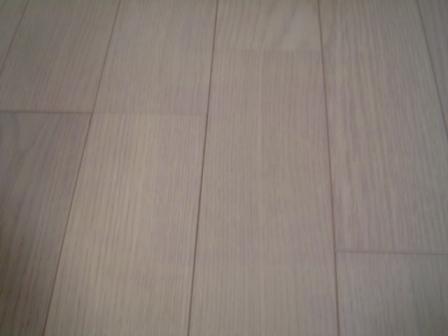yukasimi07.JPG